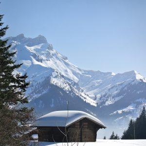 Cours Prives Ski